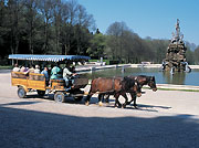 Picture: Carriage rides on Herrenchiemsee Island